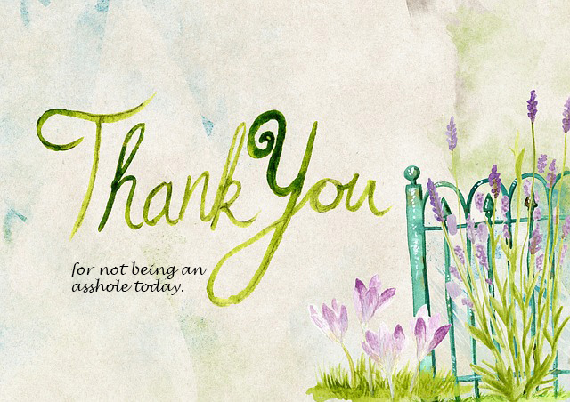 thank-you-944086_640